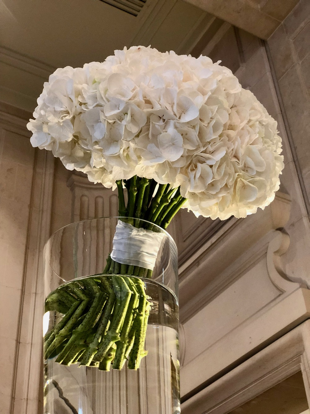Classy colibri at the Four Seasons Hotel George V Paris, flower creations by Jeff Leatham ©classycolibr
