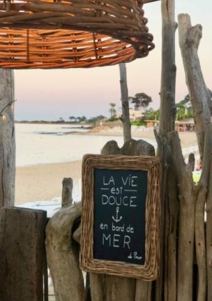 Classy colibri at Prao Plage, beach club, La Nartelle, Sainte-Maxime, France
